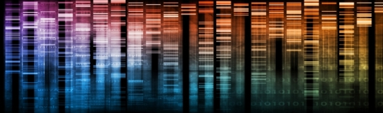 DNA library3